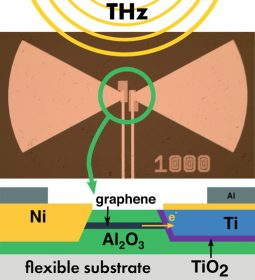 Picture and schematics of the graphene-based rectennas.